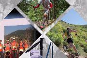 Pioneer Carbon Fiber Folding Trekking Poles